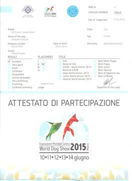 Giudizio della Mondiale del 11-6-2015
