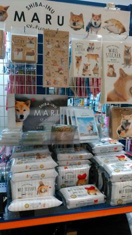 世界で一番有名な柴犬「まる」。100円ショップのキャンドゥと、まさかのコラボです!全国で売り切れ続出だそうです。