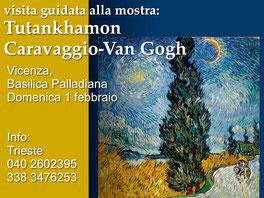 Trieste Visita mostra Vicenza, Casa Cultura Dr. David Ferriz o