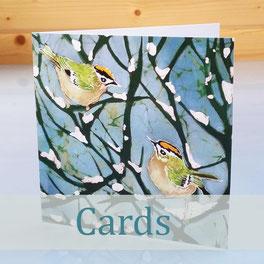 greeting card nature bird art