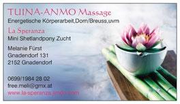 Homepage Tuina Anmo Massage Melanie Fürst