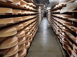 Toute la production est transformée en fromage d'Abondance
