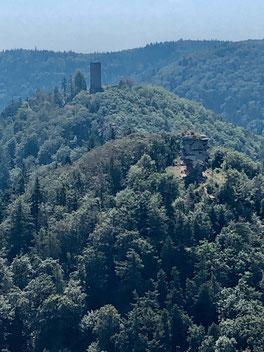 Burgruinen im Pfälzerwald