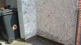 Fassadenreinigung - vorher