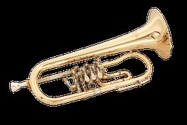 B Flügelhorn Ricco Kühn