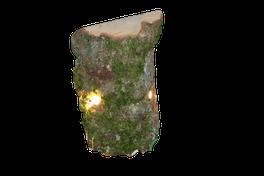Baumstamm-Beleuchtung, Schaufensterdeko zum Hervorheben einzelner Produkte