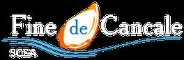 Logo huître fine de Cancale, huître logo