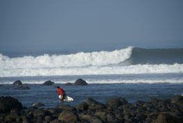 surfing medewi