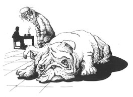 Fred, the bulldog.  Illustrated by Trish Phillips