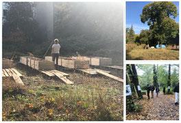 Hevrin Khalaf garden in october 2019