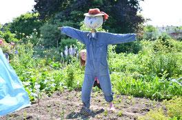 Vogelscheuche Selbstversorger Garten Kinder