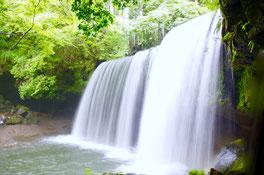 水と自律神経