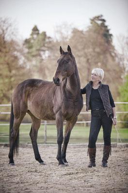 Das Pferd als Spiegel Ihrer Selbst