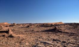 Trockene Sahara Landschaft