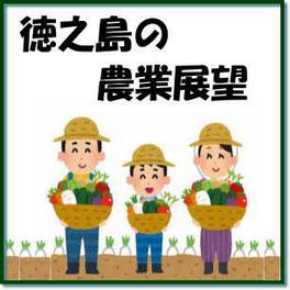 徳之島の農業展望