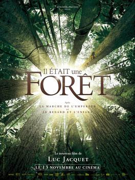 Naissance et vie d'une forêt tropicale: 700 ans en une heure et quart (©The Walt Disney Company)