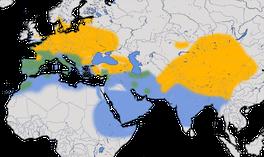 Karte zur Verbreitung des Hausrotschwanzes  (Phoenicurus phoenicurus)
