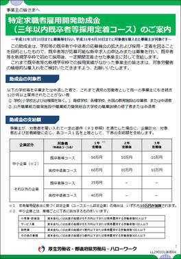 特定求職者雇用開発助成金(三年以内既卒者等採用定着コース)