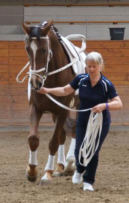 Turnier Neustadt Dosse am 30.05.2015