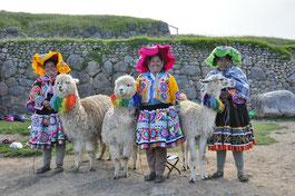 Der Glanz der Anden Cuzu Machu Picchu Titicacasee