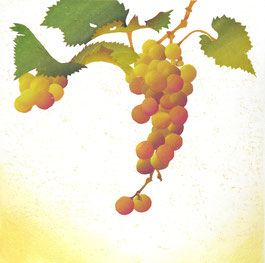 Grape-5  40x40cm