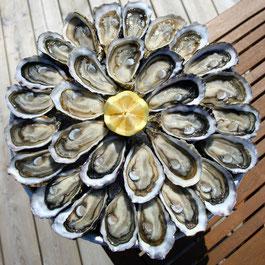 Le Teich Vacances , Bassin Arcachon Tourisme - huîtres, fruits de mer et poissons