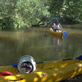 Le Teich Vacances , Bassin Arcachon Tourisme - Canoë sur la Leyre
