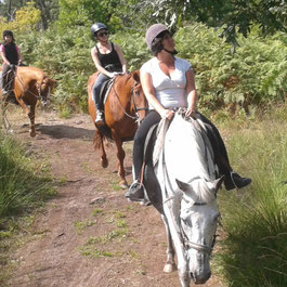 Le Teich Vacances , Bassin Arcachon Tourisme - balade à cheval et poney