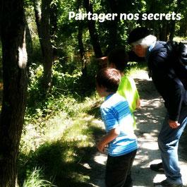 Le Teich Vacances , Bassin Arcachon Tourisme - Partager nos secrets