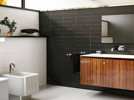 ceramic wall tile - Evolution