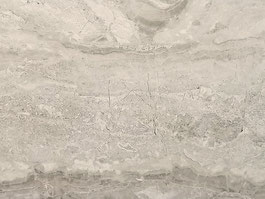 Polished Floor Tile - Dino-Light-DN36331