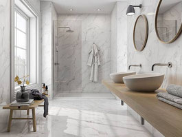 porcelain tile - Statuary