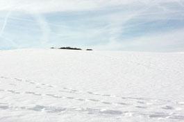 Verschneite Landschaft, Spuren im Schnee