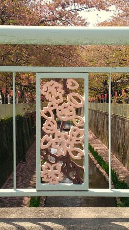 高井戸地区センター脇の川沿いの桜並木、ちょうど去年の4/12に撮影したものです。橋の欄干も桜です(⌒‐⌒)