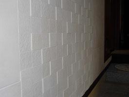 玄関 壁 エコカラット