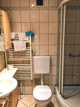 シャワー、WC、洗面所