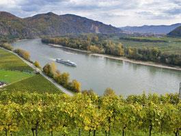 Zeitgeist Weinreisen Austria
