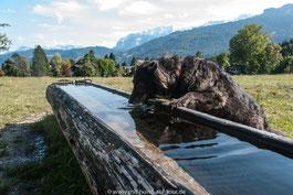 Wandern mit Hund Philosophenweg Garmisch