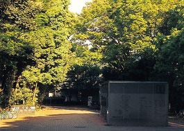 横浜国立大学キャンパス