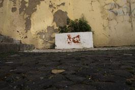 Lisboa Photography, Street Photography Lisboa, Street Photography Lisbon, Lisbon Street