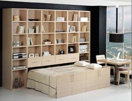 Belitec - Bett: Das etwas andere Schrankbett
