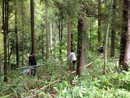 竹の間引きを行い、手作りイカダに再利用するボーイスカウト活動