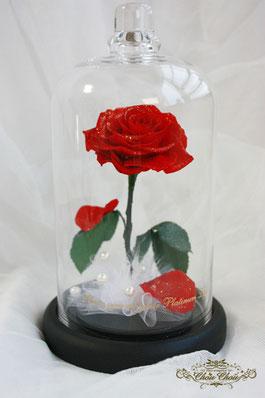 美女と野獣 薔薇 ガラスドーム プリザーブドフラワー 刻印