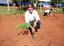 「植えた木が大きく育つよう、 水やりを頑張っています。大きく 育ったら、涼しい木陰で友達と遊 びたいです」と語ってくれた 7 年 生のリーソクランさん