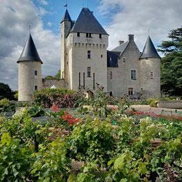 visite-chateau-vallee-loire-touraine-tours-chinon-renaissance-tuffeau-rivau-lemere-jardins-contemporains-conte-fees