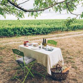 pique-nique-dans-levignoble-Vouvray-Vallee-Loire-Rendez-Vous-dans-les-Vignes