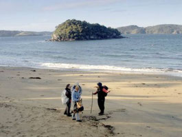 Ulva's Guided Walks - Private Tours