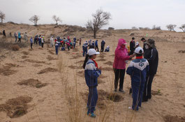 Planted trees hoping that greenery would further expand in the desert
