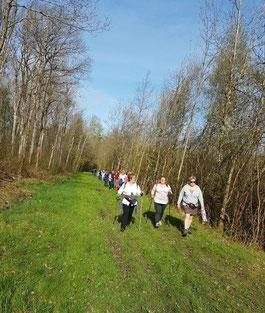 La randonnée pédestre est l'une des nombreuses activités proposées par SLC.
