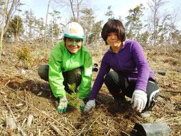 福島県で海岸林再生してます(本人じゃないです)
